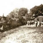Cumberland Rose, Passenger Train